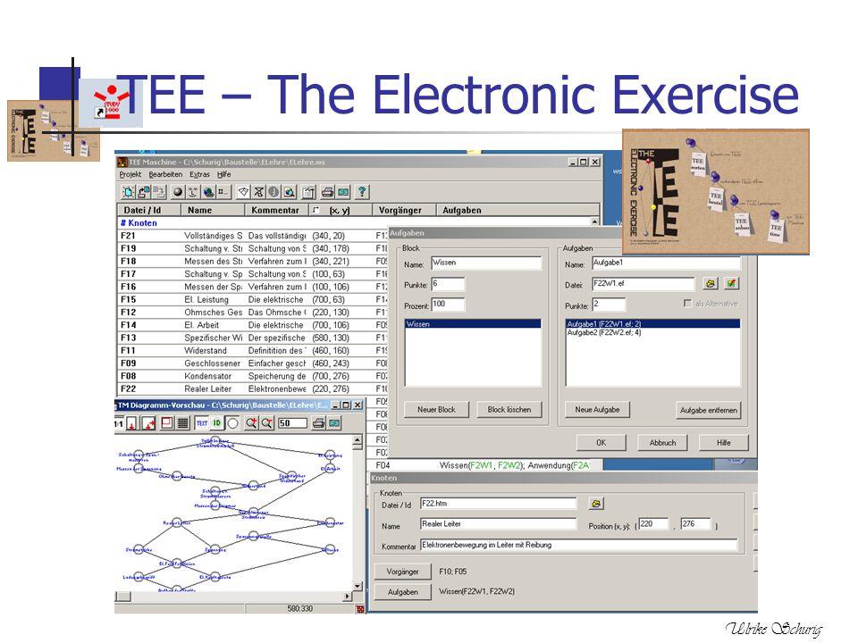 Ulrike Schurig TEE – The Electronic Exercise