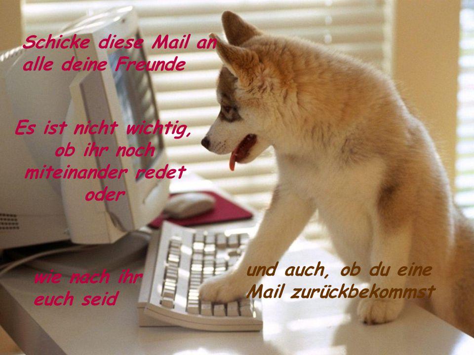 Schicke diese Mail an alle deine Freunde Es ist nicht wichtig, ob ihr noch miteinander redet oder wie nach ihr euch seid und auch, ob du eine Mail zurückbekommst