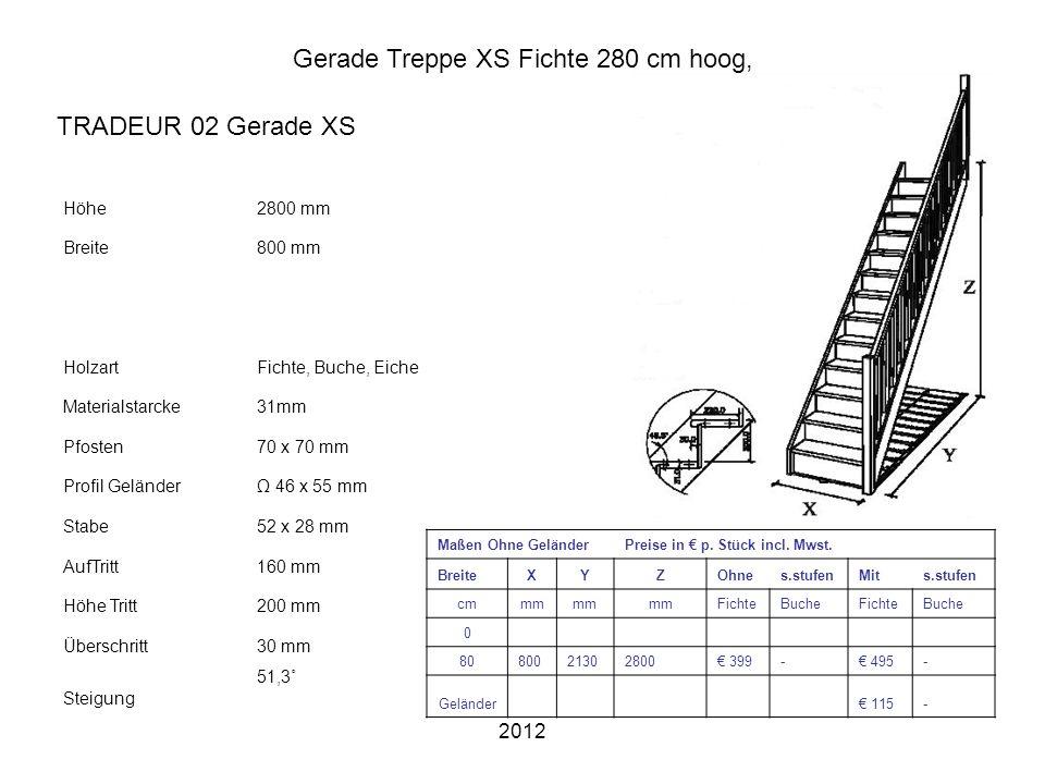 2012 Gerade Treppe XS Fichte 280 cm hoog, Höhe2800 mm Breite800 mm HolzartFichte, Buche, Eiche Materialstarcke31mm Pfosten70 x 70 mm Profil GeländerΩ