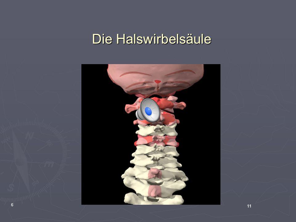 11 6 Die Halswirbelsäule