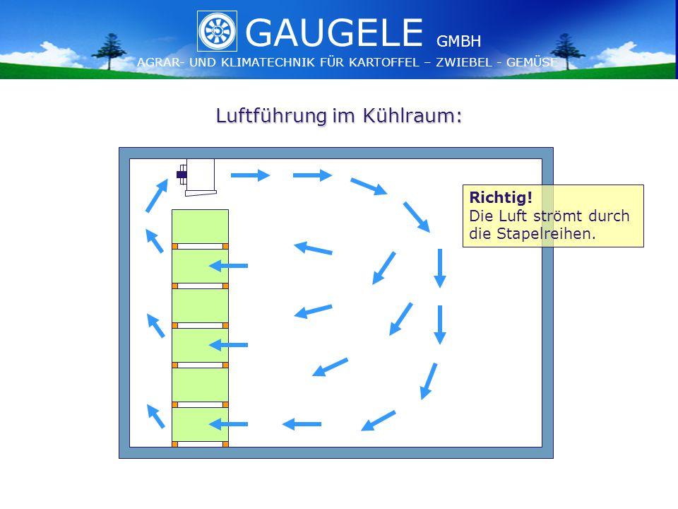 GAUGELE AGRAR- UND KLIMATECHNIK FÜR KARTOFFEL – ZWIEBEL - GEMÜSE GMBH GAUGELE AGRAR- UND KLIMATECHNIK FÜR KARTOFFEL – ZWIEBEL - GEMÜSE GMBH Luftführung im Kühlraum: Richtig.
