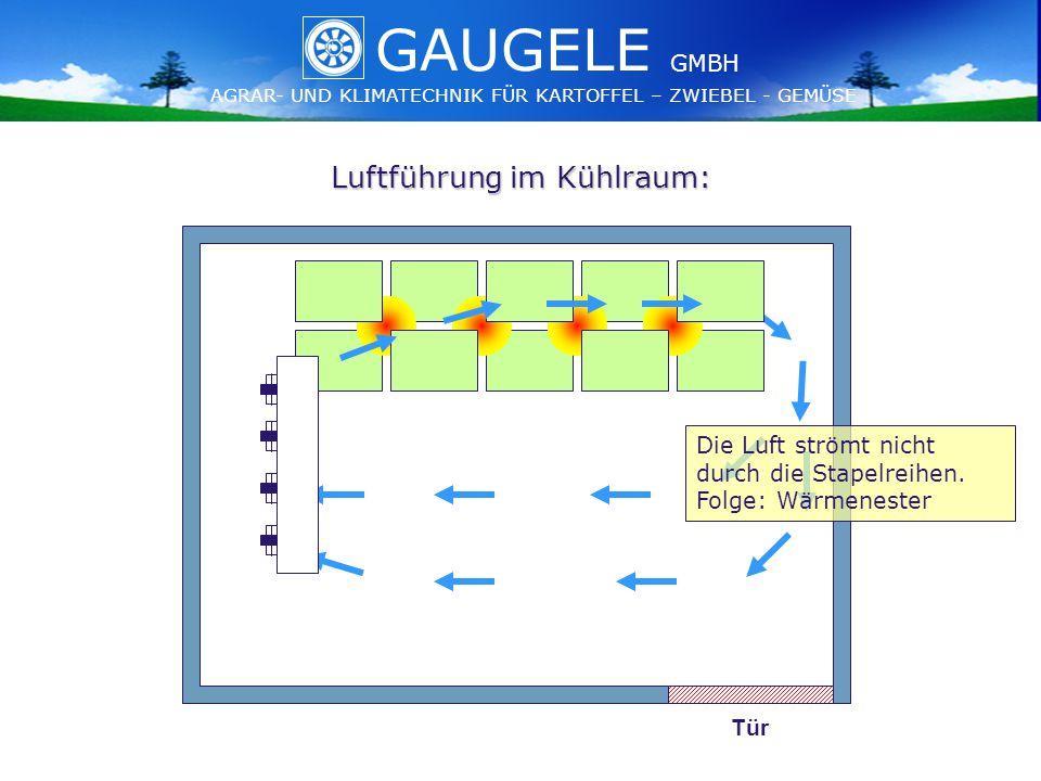 GAUGELE AGRAR- UND KLIMATECHNIK FÜR KARTOFFEL – ZWIEBEL - GEMÜSE GMBH GAUGELE AGRAR- UND KLIMATECHNIK FÜR KARTOFFEL – ZWIEBEL - GEMÜSE GMBH Luftführung im Kühlraum: Tür Die Luft strömt nicht durch die Stapelreihen.