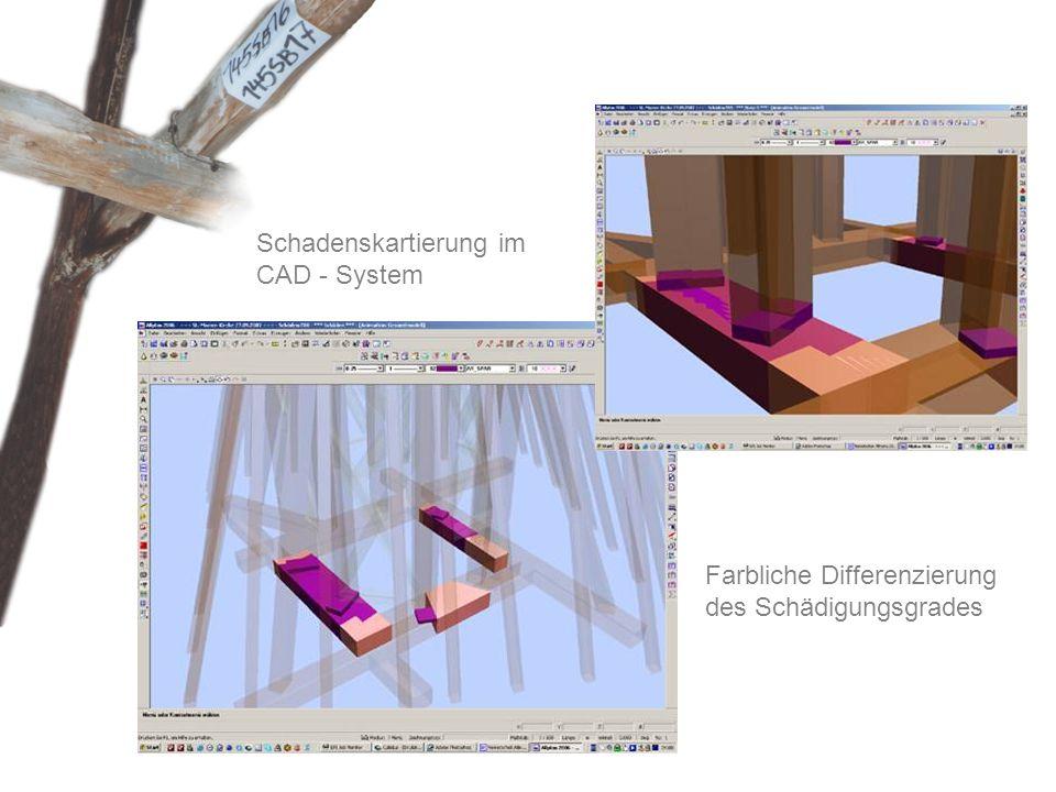 Schadenskartierung im CAD - System Farbliche Differenzierung des Schädigungsgrades
