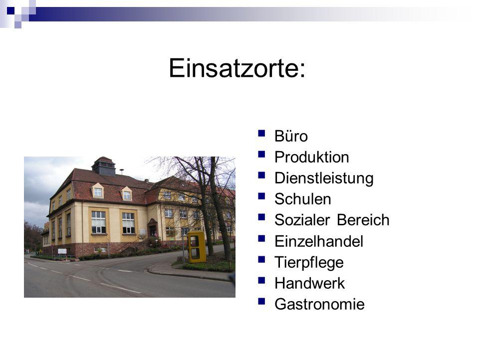 Einsatzorte:  Büro  Produktion  Dienstleistung  Schulen  Sozialer Bereich  Einzelhandel  Tierpflege  Handwerk  Gastronomie