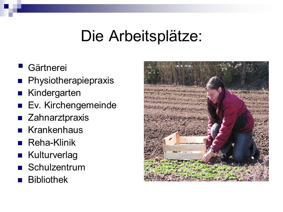 Die Arbeitsplätze:  Gärtnerei Physiotherapiepraxis Kindergarten Ev.