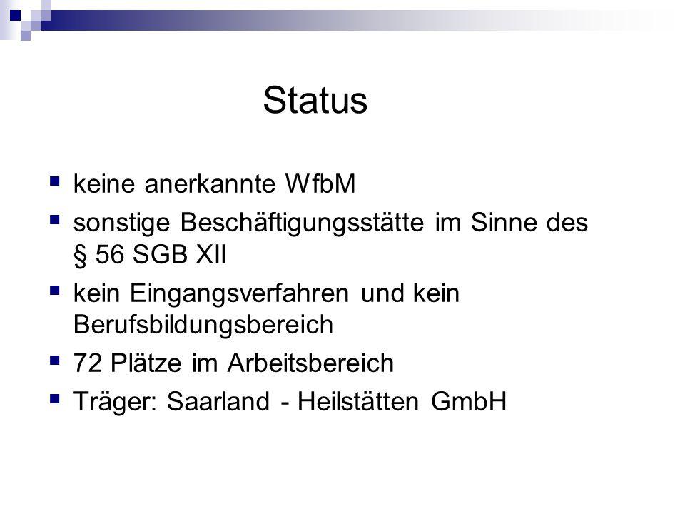 Status  keine anerkannte WfbM  sonstige Beschäftigungsstätte im Sinne des § 56 SGB XII  kein Eingangsverfahren und kein Berufsbildungsbereich  72 Plätze im Arbeitsbereich  Träger: Saarland - Heilstätten GmbH