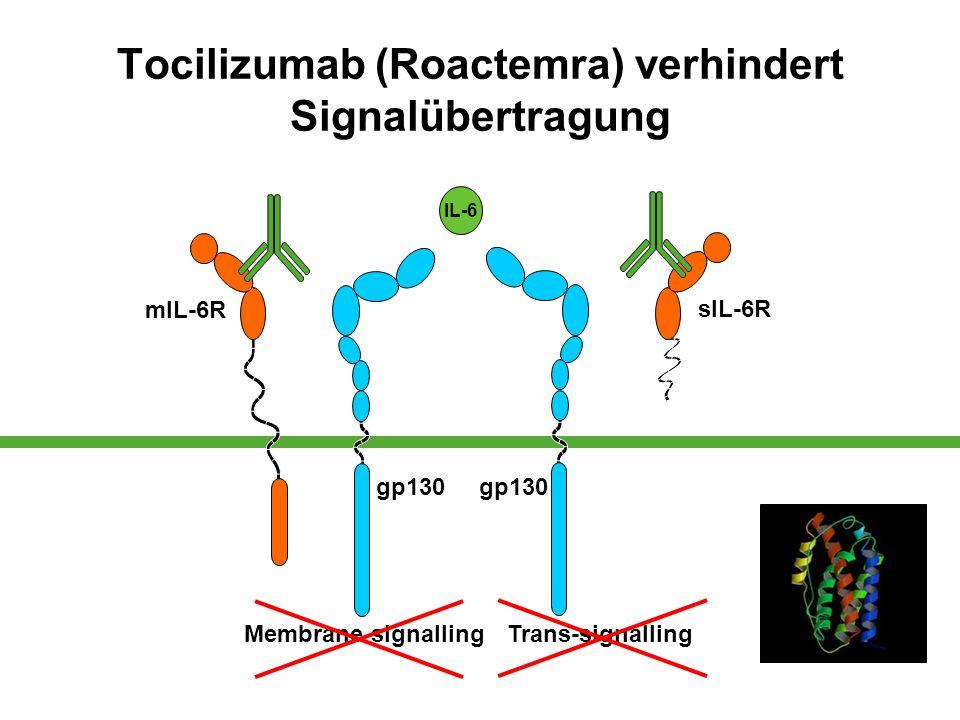 Tocilizumab (Roactemra) verhindert Signalübertragung mIL-6R gp130 Membrane signallingTrans-signalling sIL-6R gp130 IL-6