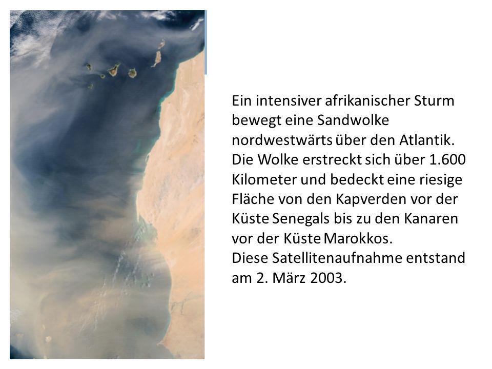 Ein intensiver afrikanischer Sturm bewegt eine Sandwolke nordwestwärts über den Atlantik. Die Wolke erstreckt sich über 1.600 Kilometer und bedeckt ei