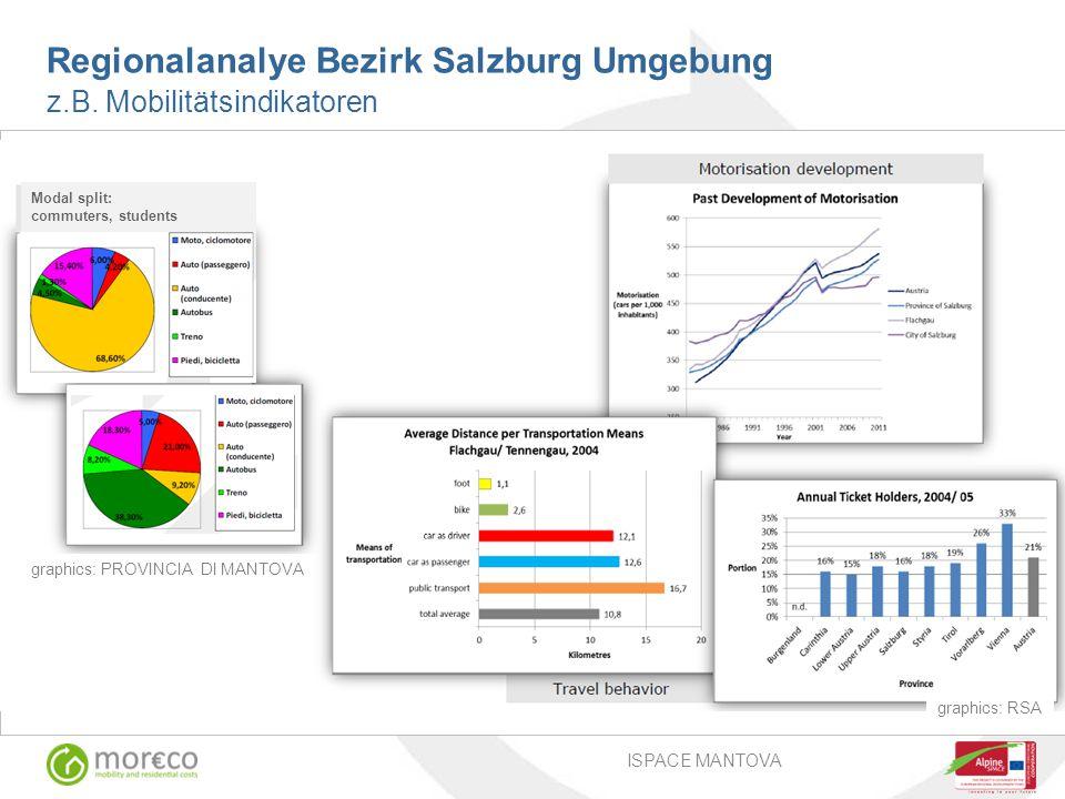 Regionalanalye Bezirk Salzburg Umgebung z.B.