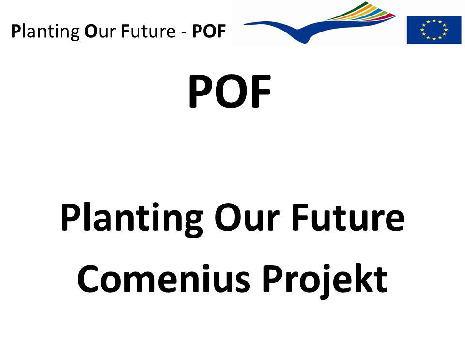 Planting Our Future - POF Teilnehmerländer Island Schweden Polen Estland Deutschl.