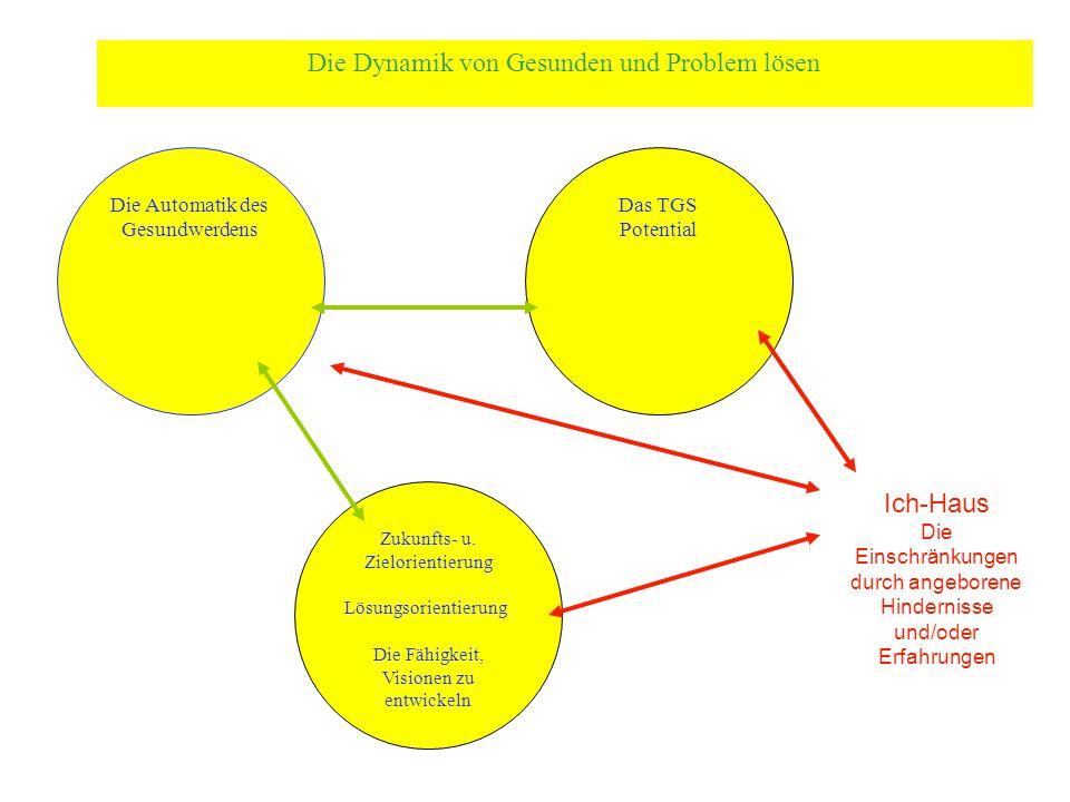 Die Automatik des Gesundwerdens Das TGS Potential Zukunfts- u. Zielorientierung Lösungsorientierung Die Fähigkeit, Visionen zu entwickeln Die Dynamik