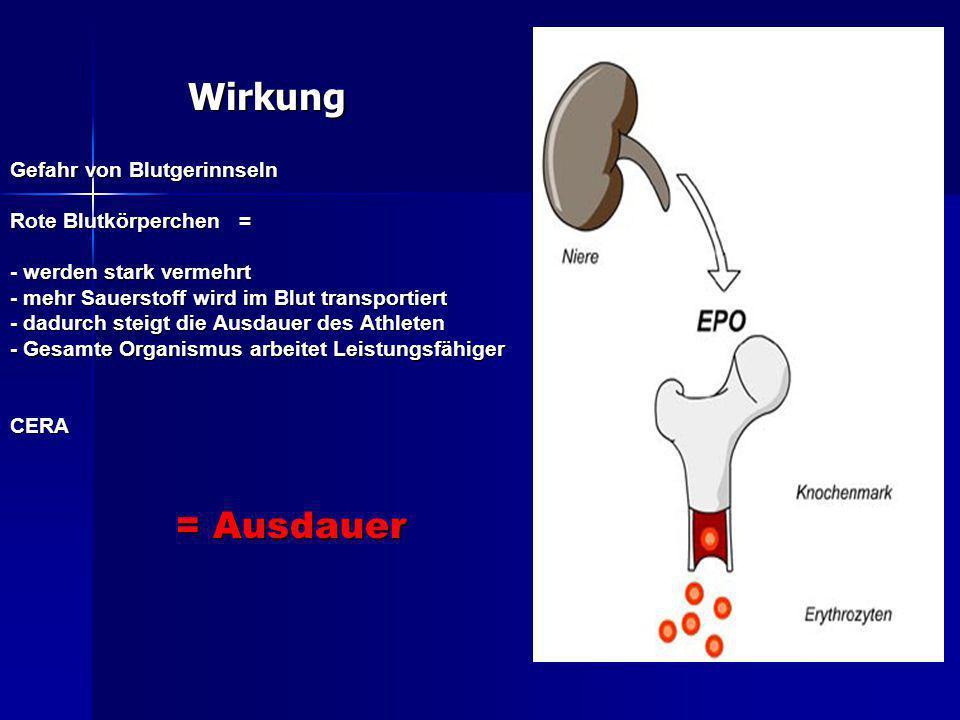 Wirkung Gefahr von Blutgerinnseln Rote Blutkörperchen = - werden stark vermehrt - mehr Sauerstoff wird im Blut transportiert - dadurch steigt die Ausd