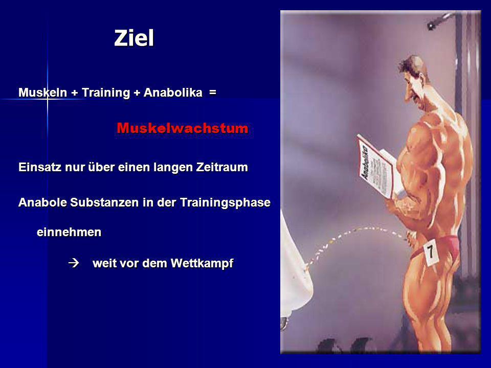 Ziel Ziel Muskeln + Training + Anabolika = Muskelwachstum Einsatz nur über einen langen Zeitraum Anabole Substanzen in der Trainingsphase einnehmen 