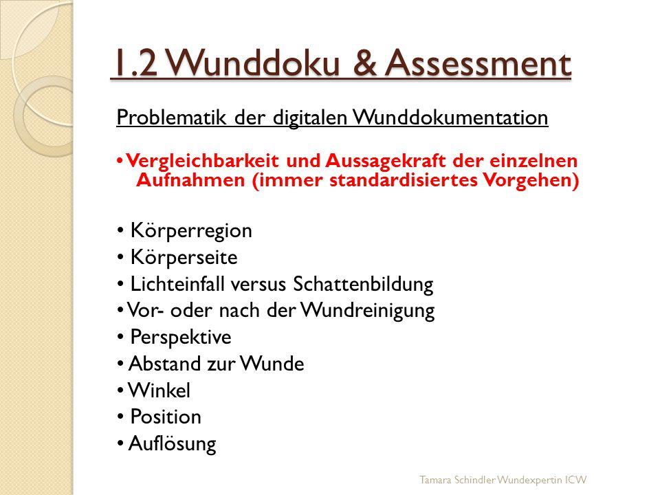 1.2 Wunddoku & Assessment Problematik der digitalen Wunddokumentation Vergleichbarkeit und Aussagekraft der einzelnen Aufnahmen (immer standardisierte