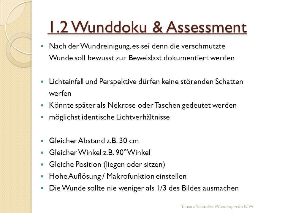 1.2 Wunddoku & Assessment Nach der Wundreinigung, es sei denn die verschmutzte Wunde soll bewusst zur Beweislast dokumentiert werden Lichteinfall und