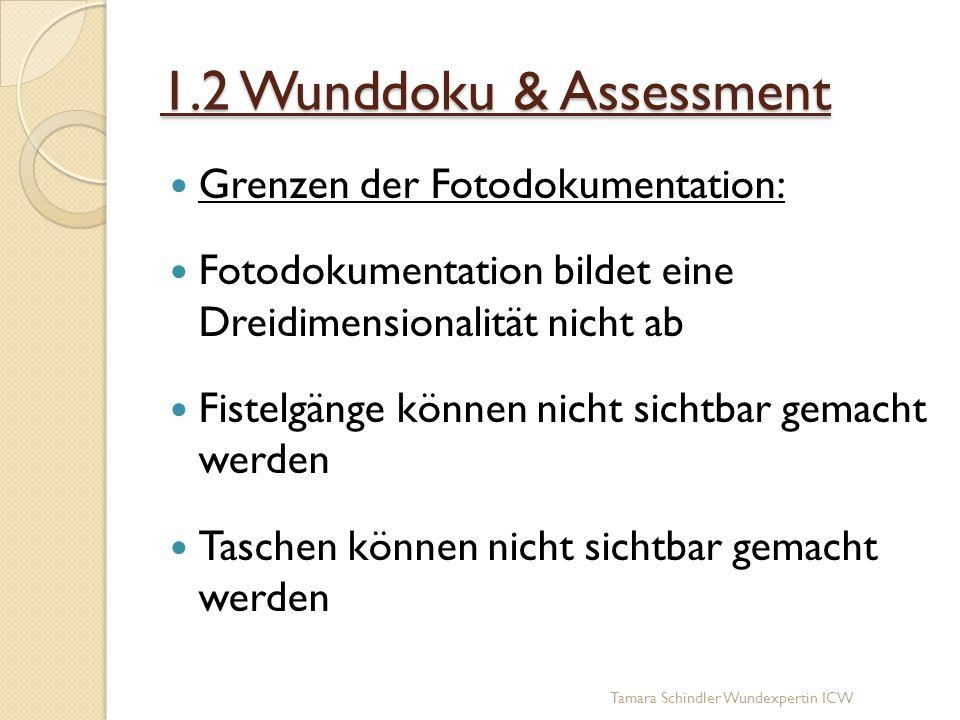 1.2 Wunddoku & Assessment Grenzen der Fotodokumentation: Fotodokumentation bildet eine Dreidimensionalität nicht ab Fistelgänge können nicht sichtbar