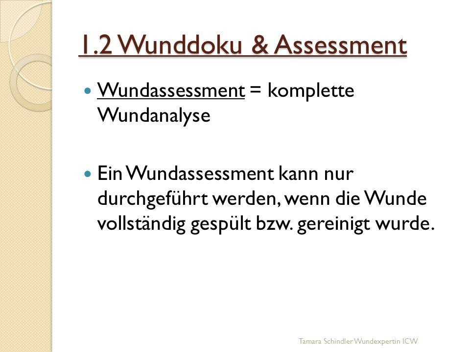 1.2 Wunddoku & Assessment Wundassessment = komplette Wundanalyse Ein Wundassessment kann nur durchgeführt werden, wenn die Wunde vollständig gespült b
