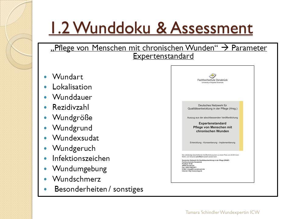 """1.2 Wunddoku & Assessment """"Pflege von Menschen mit chronischen Wunden""""  Parameter Expertenstandard Wundart Lokalisation Wunddauer Rezidivzahl Wundgrö"""