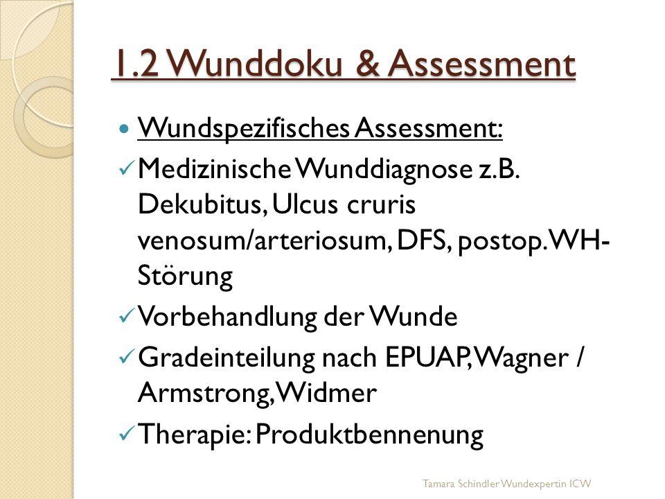 1.2 Wunddoku & Assessment Wundspezifisches Assessment: Medizinische Wunddiagnose z.B. Dekubitus, Ulcus cruris venosum/arteriosum, DFS, postop. WH- Stö