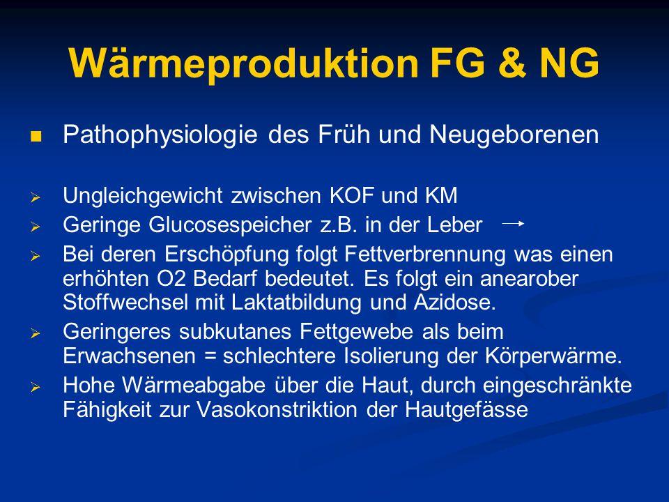 Wärmeproduktion FG & NG Pathophysiologie des Früh und Neugeborenen  Ungleichgewicht zwischen KOF und KM  Geringe Glucosespeicher z.B.