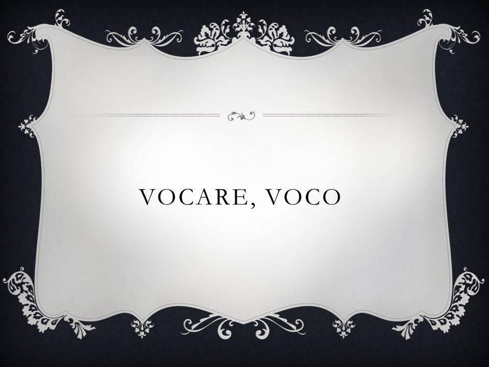 VOCARE, VOCO