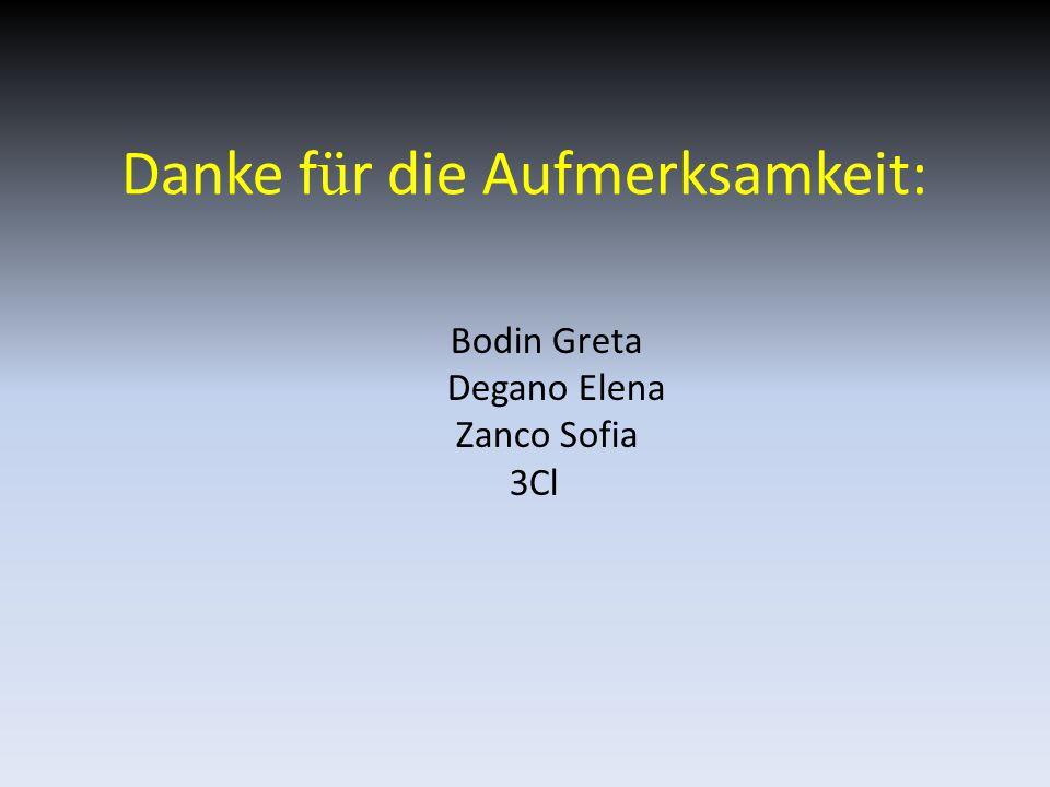 Danke f ü r die Aufmerksamkeit: Bodin Greta Degano Elena Zanco Sofia 3Cl