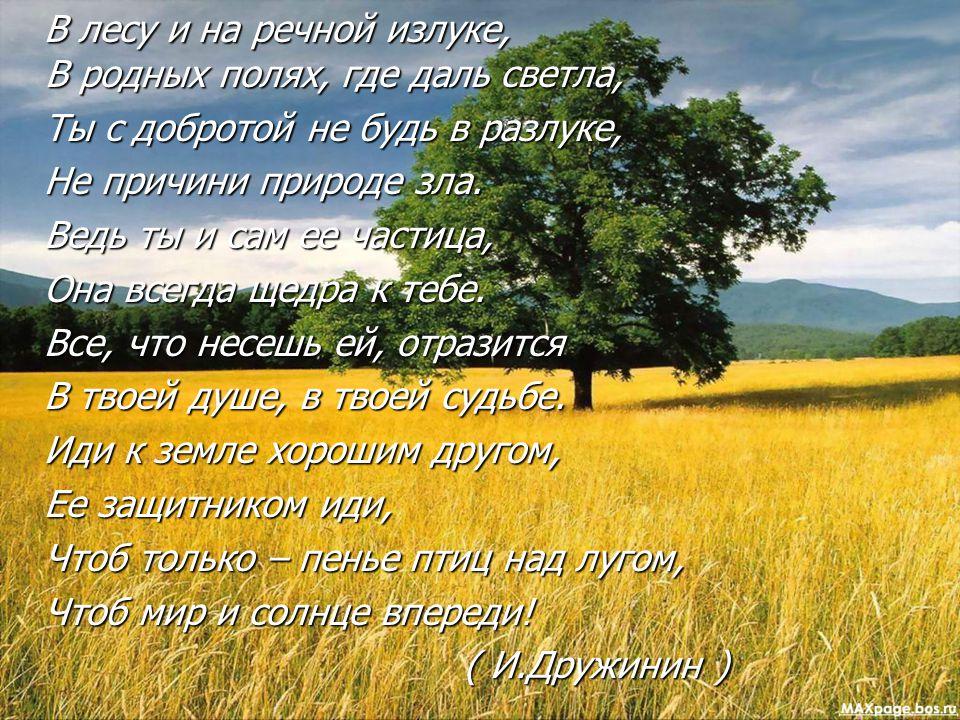 В лесу и на речной излуке, В родных полях, где даль светла, В лесу и на речной излуке, В родных полях, где даль светла, Ты с добротой не будь в разлук