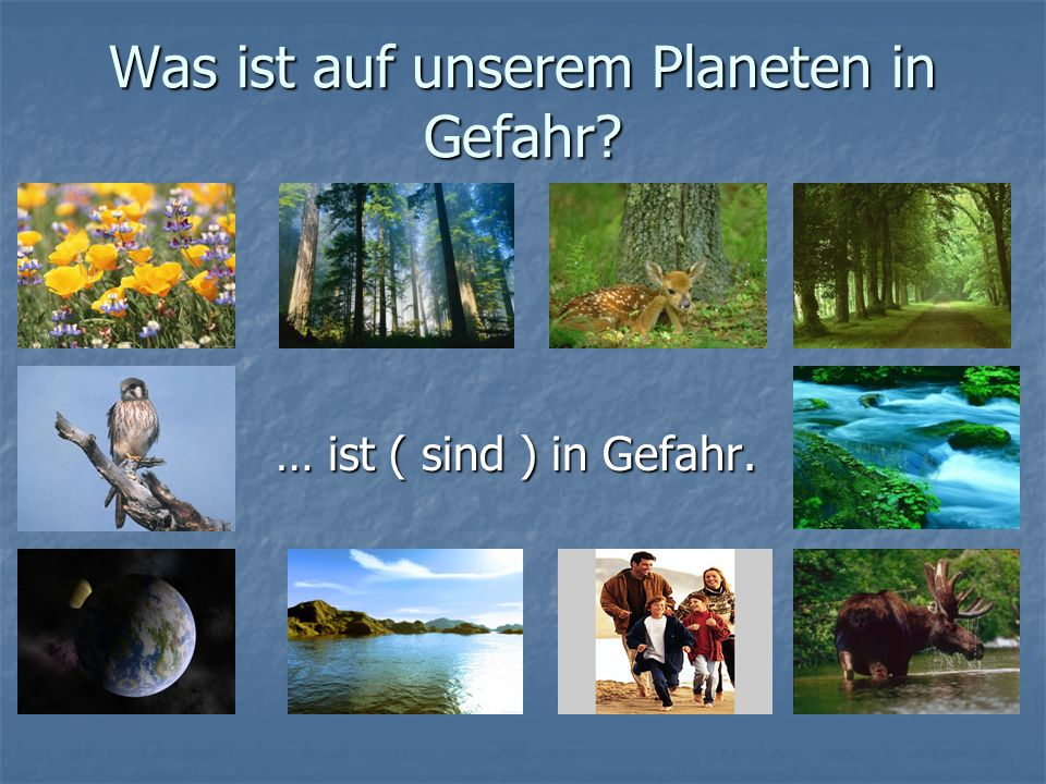 Was ist auf unserem Planeten in Gefahr? … ist ( sind ) in Gefahr. … ist ( sind ) in Gefahr.
