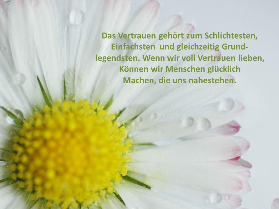 Vertrauen schenken Unsere Freundschaft ist so lebendig und Heiter wie eine Blumenwiese. Wir können uns hineinfallen lassen, Weil wir wissen, dass der