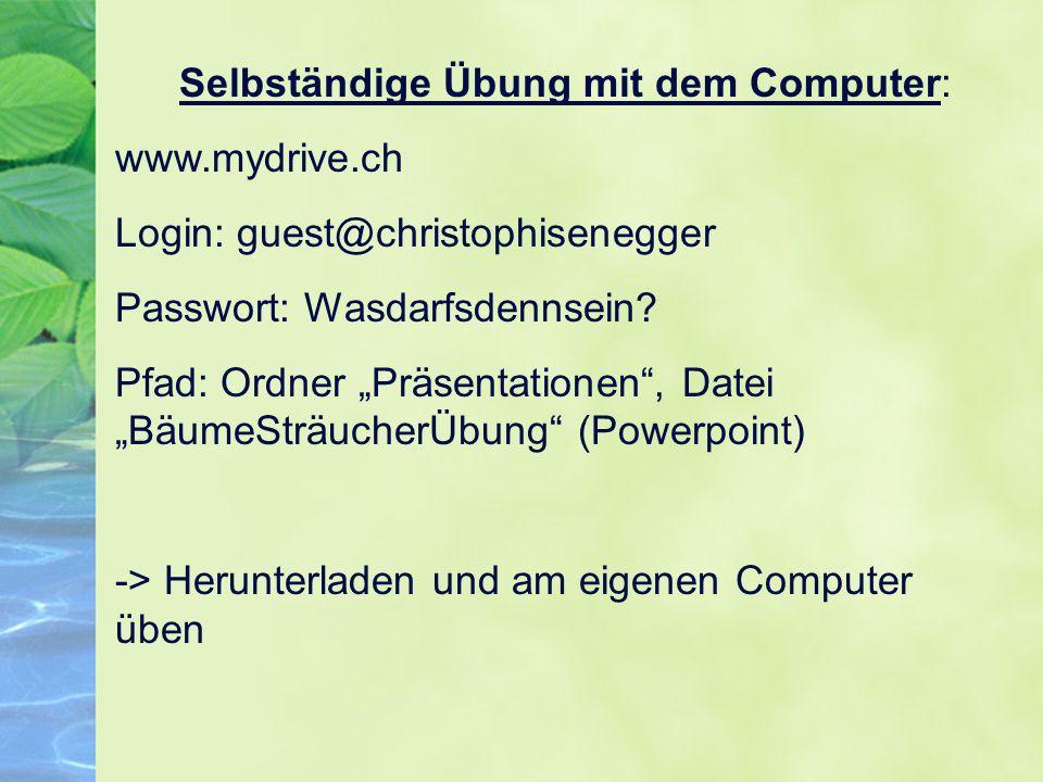 """Selbständige Übung mit dem Computer: www.mydrive.ch Login: guest@christophisenegger Passwort: Wasdarfsdennsein? Pfad: Ordner """"Präsentationen"""", Datei """""""