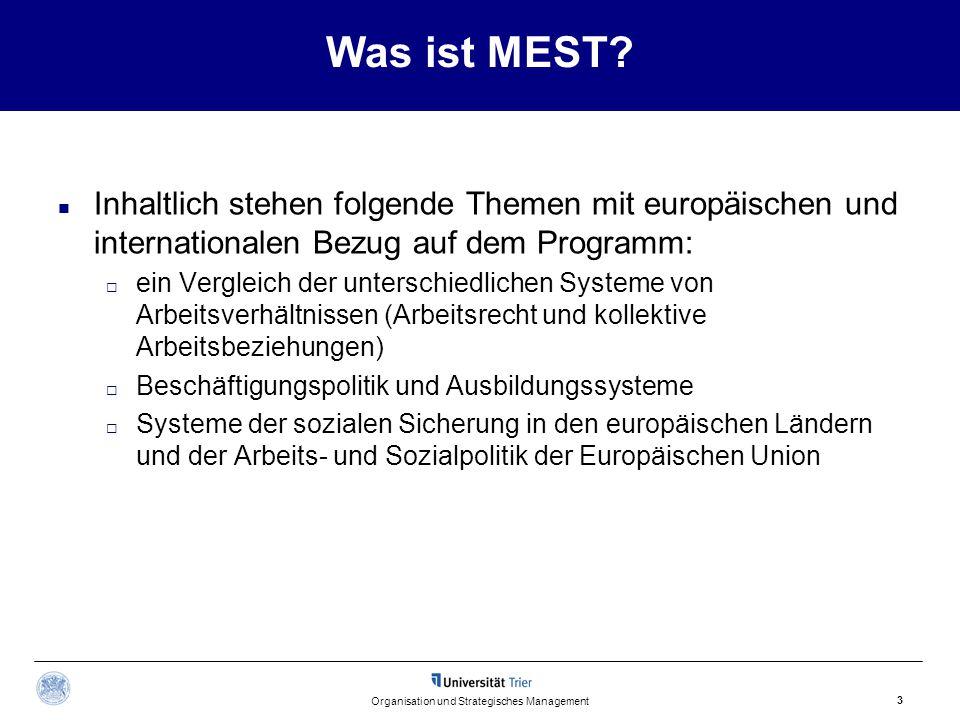 Was ist MEST? Inhaltlich stehen folgende Themen mit europäischen und internationalen Bezug auf dem Programm:  ein Vergleich der unterschiedlichen Sys