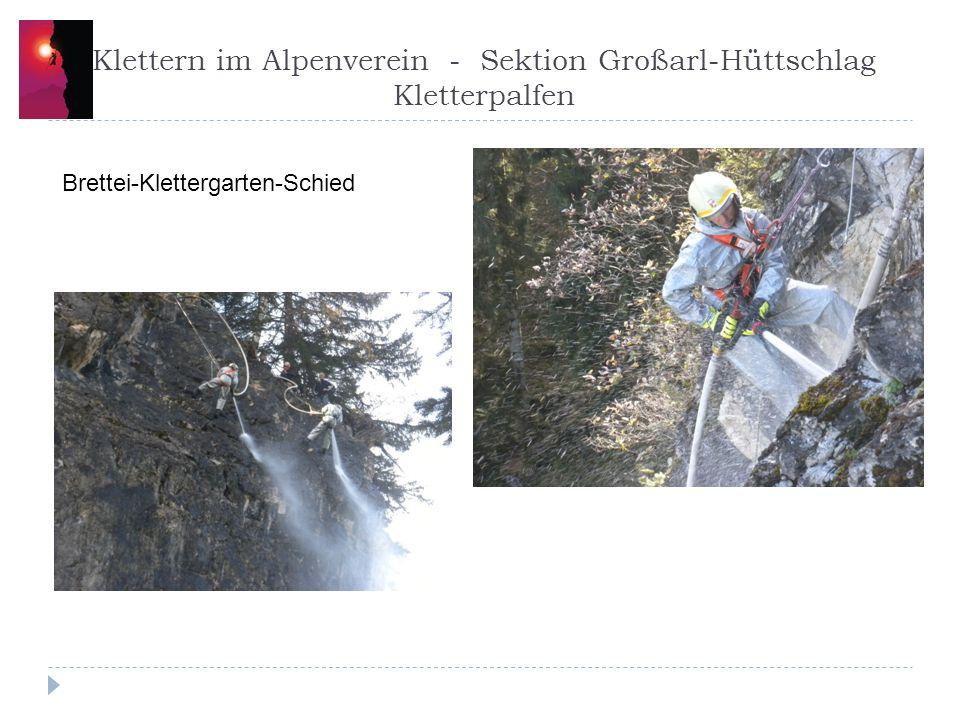 Klettern im Alpenverein - Sektion Großarl-Hüttschlag Klettergarten Brettei-Palfen Gesäubert, gehackt, geschnitten, Feuerwehr 2x gespritzt Sepp Inhöger, Gamsjager Peter, Wast und ich haben derzeit 3 Routen gebohrt.