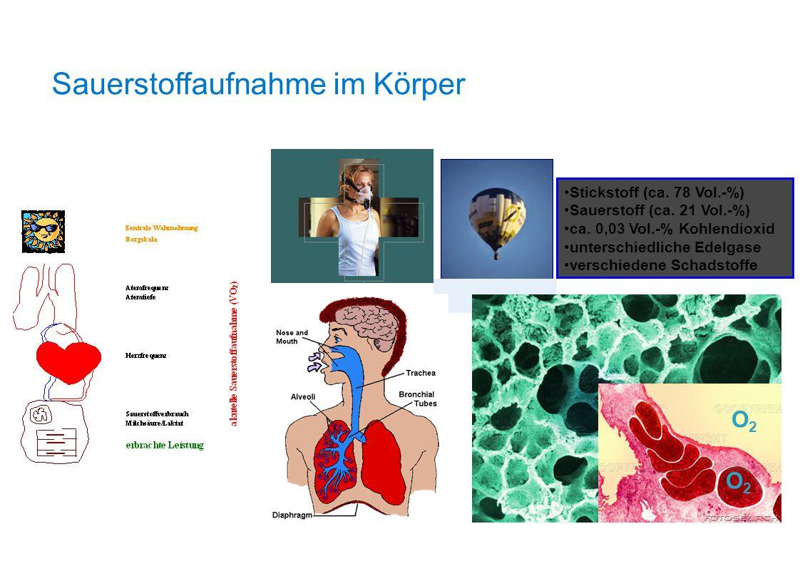 Sauerstoffaufnahme im Körper Stickstoff (ca. 78 Vol.-%) Sauerstoff (ca. 21 Vol.-%) ca. 0,03 Vol.-% Kohlendioxid unterschiedliche Edelgase verschiedene