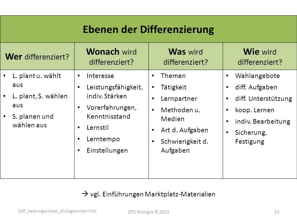 Ebenen der Differenzierung Wer differenziert.Wonach wird differenziert.