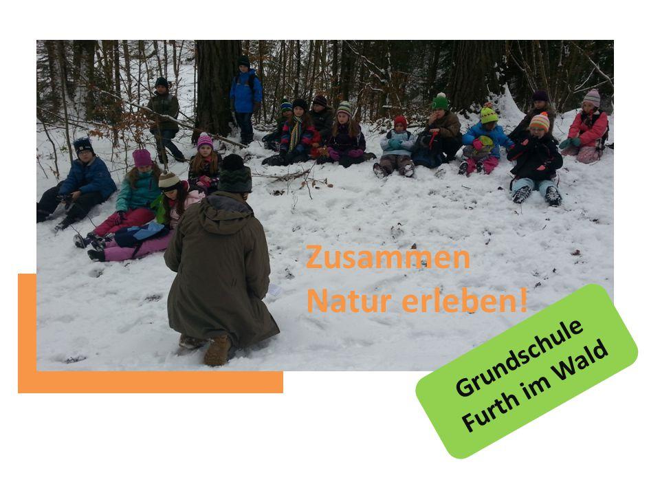 Grundschule Furth im Wald Zusammen Natur erleben!