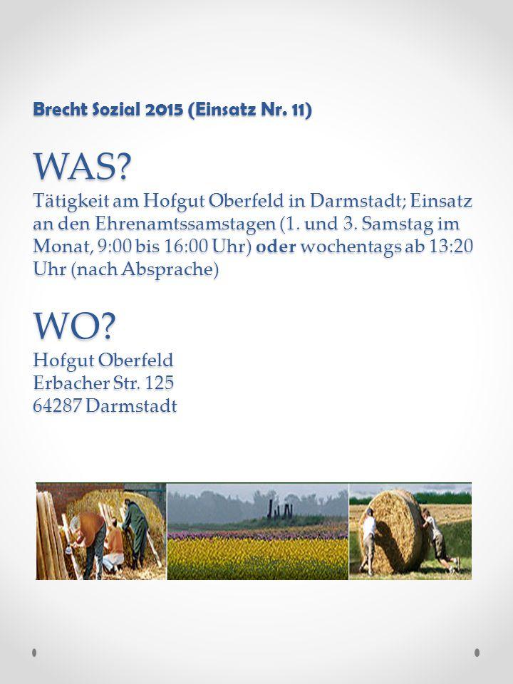 Brecht Sozial 2015 (Einsatz Nr. 11) WAS.