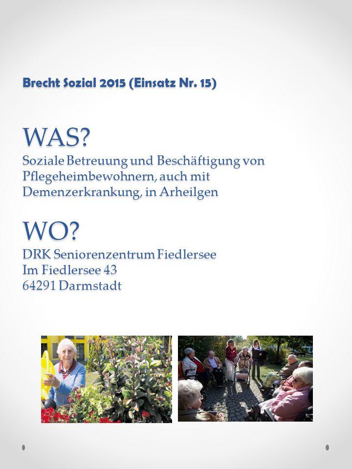 Brecht Sozial 2015 (Einsatz Nr. 15) WAS.