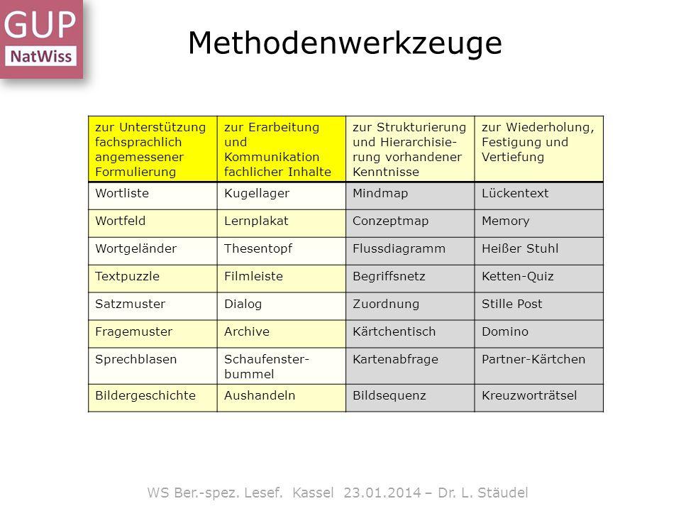 Methodenwerkzeuge WS Ber.-spez. Lesef. Kassel 23.01.2014 – Dr. L. Stäudel zur Unterstützung fachsprachlich angemessener Formulierung zur Erarbeitung u