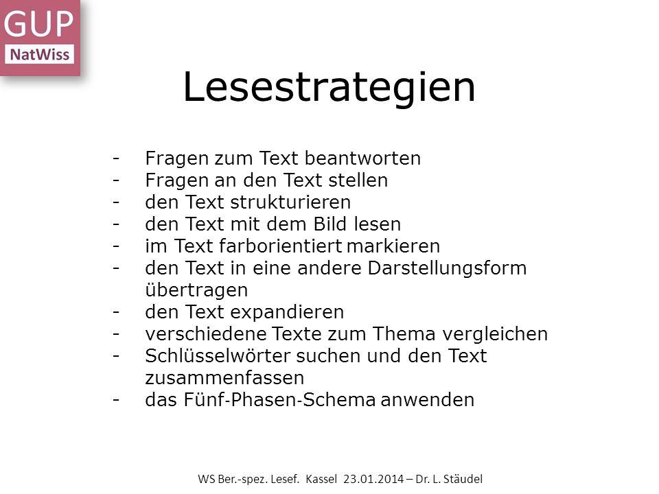 WS Ber.-spez. Lesef. Kassel 23.01.2014 – Dr. L. Stäudel -Fragen zum Text beantworten -Fragen an den Text stellen -den Text strukturieren -den Text mit