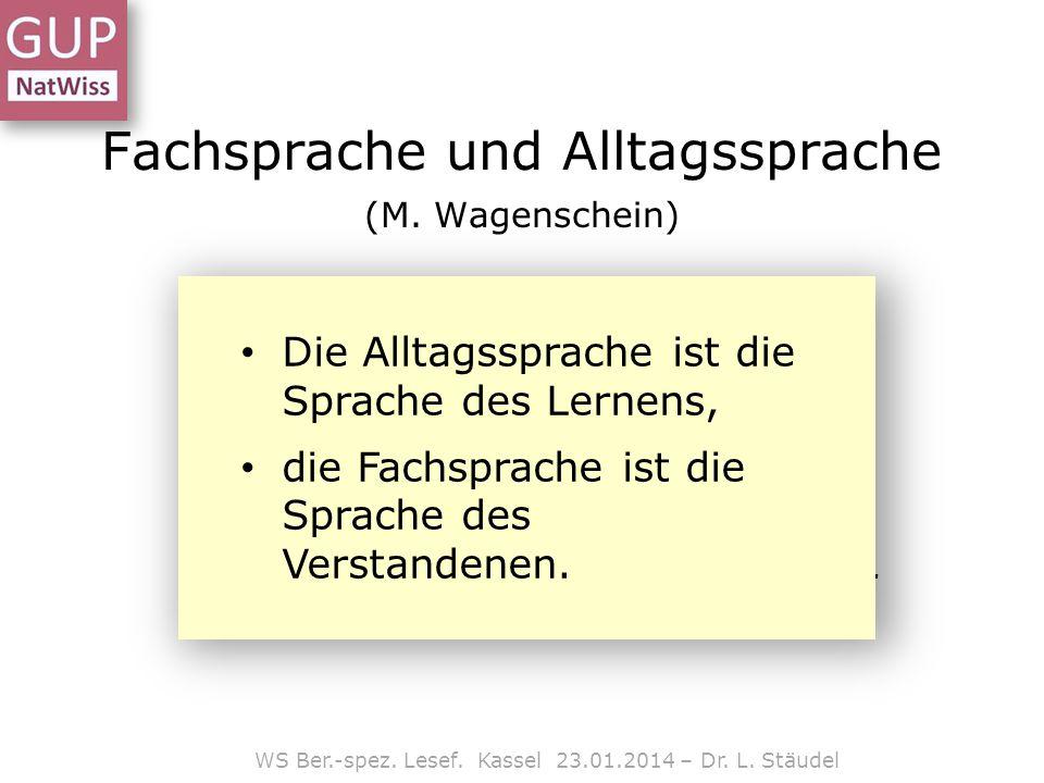 Lesestrategien WS Ber.-spez.Lesef. Kassel 23.01.2014 – Dr.