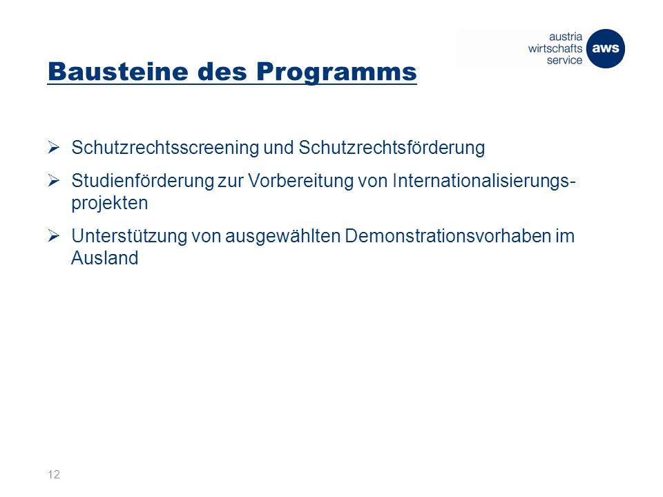 Bausteine des Programms  Schutzrechtsscreening und Schutzrechtsförderung  Studienförderung zur Vorbereitung von Internationalisierungs- projekten  Unterstützung von ausgewählten Demonstrationsvorhaben im Ausland 12