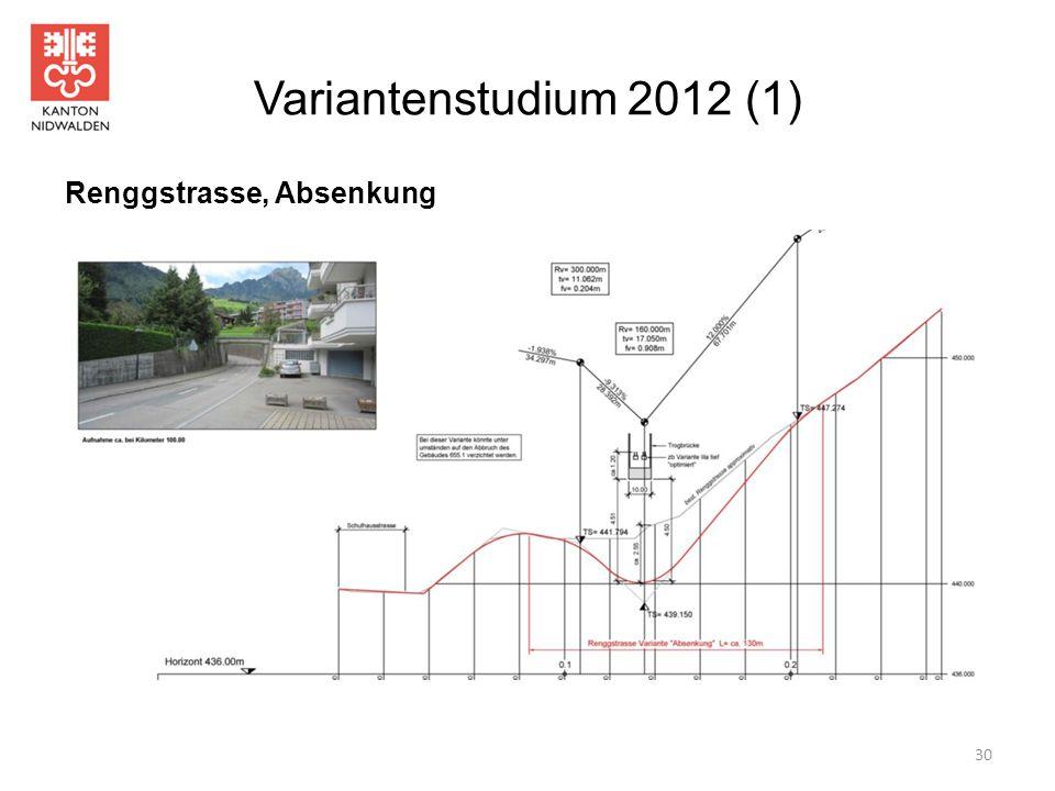 Variantenstudium 2012 (1) 30 Renggstrasse, Absenkung