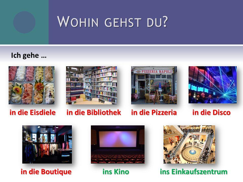 in die Eisdiele in die Bibliothek in die Pizzeria in die Disco in die Boutique ins Kino ins Einkaufszentrum W OHIN GEHST DU ? Ich gehe …