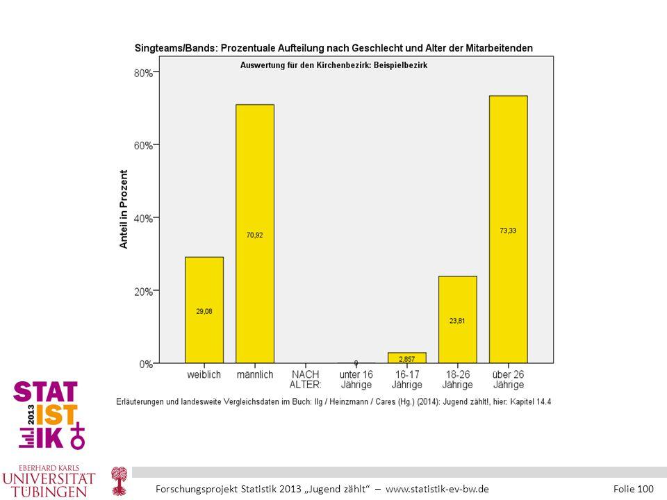 """Forschungsprojekt Statistik 2013 """"Jugend zählt – www.statistik-ev-bw.de Folie 100"""