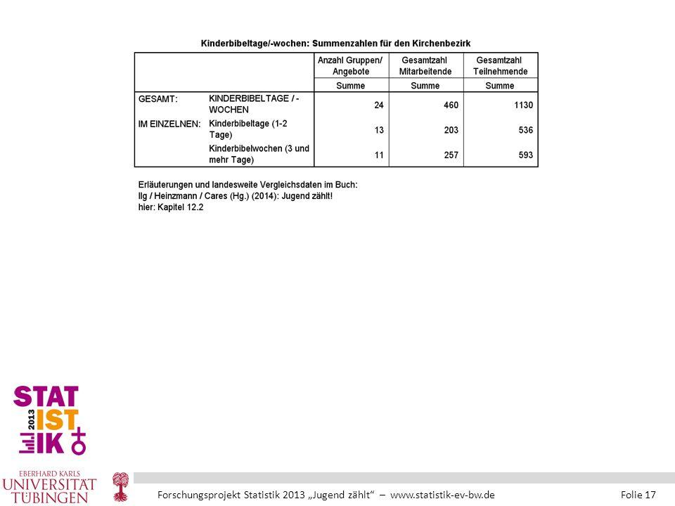 """Forschungsprojekt Statistik 2013 """"Jugend zählt – www.statistik-ev-bw.de Folie 17"""
