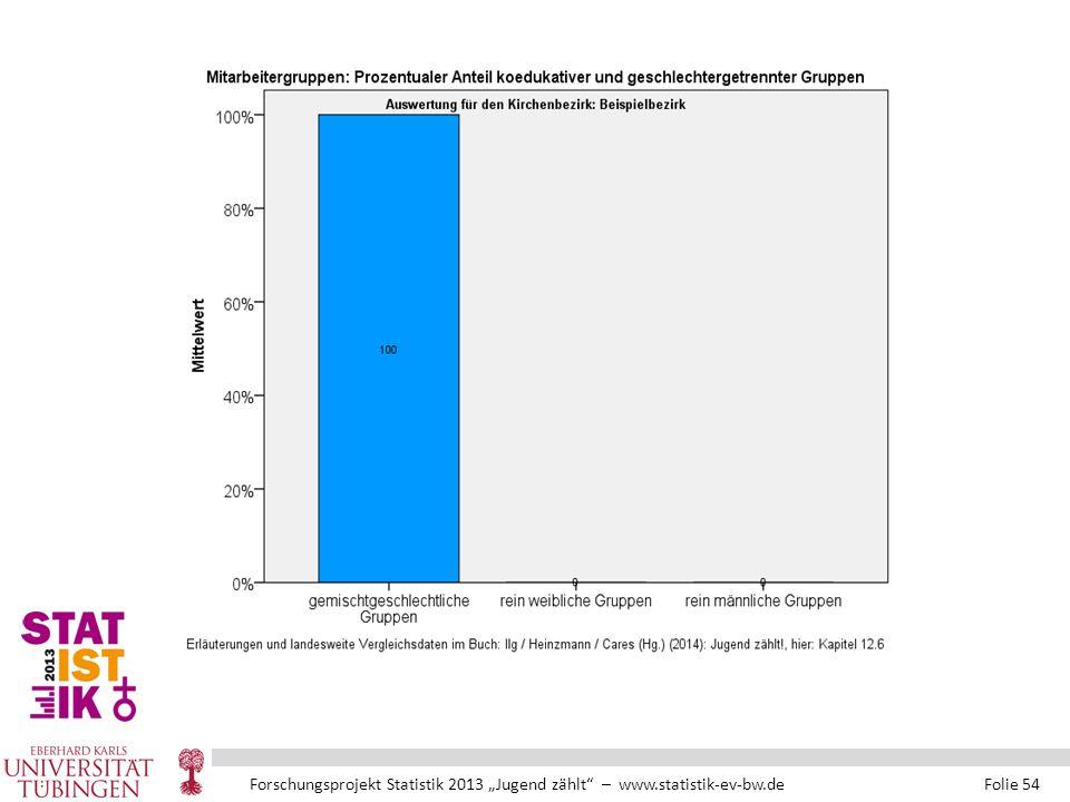 """Forschungsprojekt Statistik 2013 """"Jugend zählt – www.statistik-ev-bw.de Folie 54"""