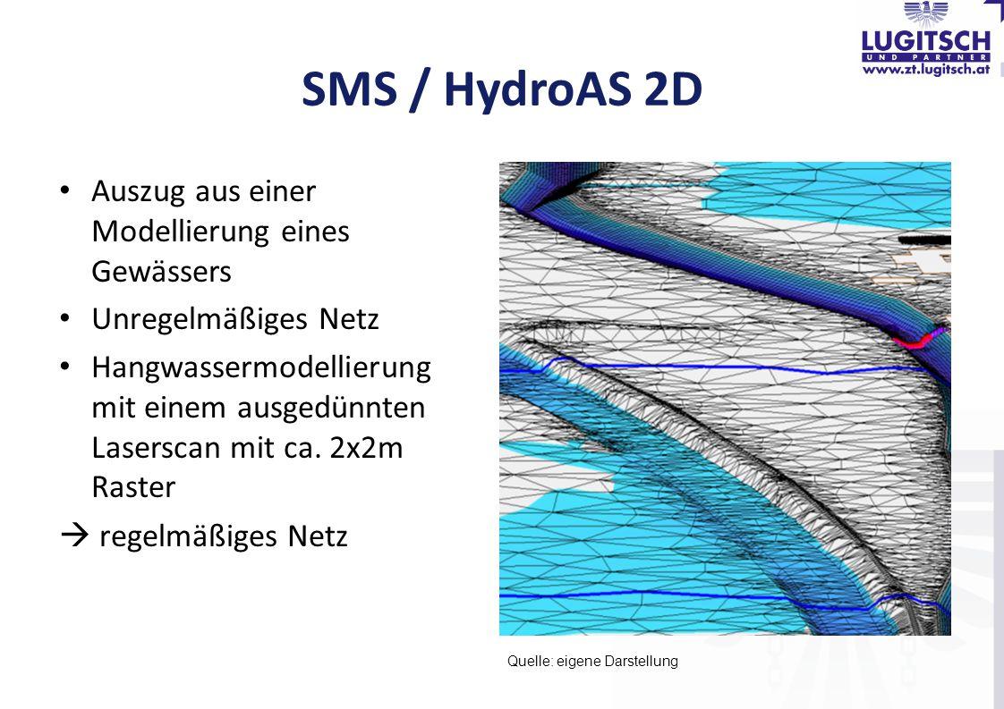 SMS / HydroAS 2D Auszug aus einer Modellierung eines Gewässers Unregelmäßiges Netz Hangwassermodellierung mit einem ausgedünnten Laserscan mit ca. 2x2