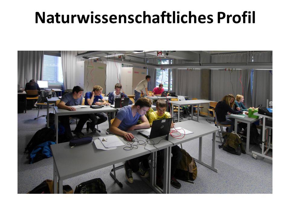  Naturwissenschaft und Technik ab Klasse 8  Praktika  Klasse 9: TRW-Tag  Exkursionen in die Fachwelt  Internetkontakte zu europäischen Schulen  Regelmäßige Teilnahme an naturwissenschaftlichen Wettbewerben