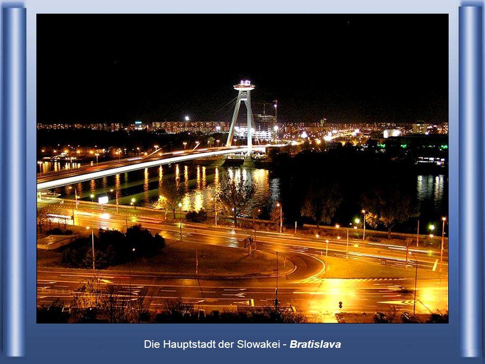 Luftbild - Aufnahme über der Donau mit Blick auf Wien