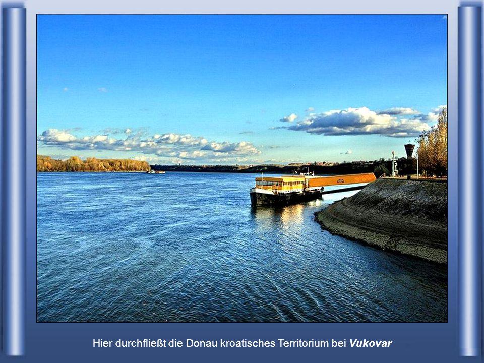 … das Donauknie bei Visegrád (Ungarn)
